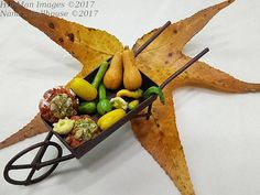 1:12 Scale Dollhouse Miniature Gourds and Squashes
