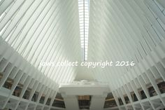 ONE WTC PORT AUTHORITY ARCHITECTURE NYC NEW YORK PHOTO SIGNED BY PHOTOGRAPHER