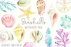 Watercolor Seashells Clipart - Nautical Watercolor Clip Art - Ocean Shells, Starfish, Conch, Seaweed, Coral - Instant Download Digital PNG