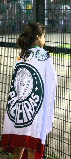 185 melhores imagens de Palmeiras  635a42ccd3e73
