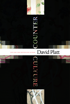 bookcover reject David Platt, New York Times, Leadership, Author, Thoughts, Writing, Photography, Photograph, Fotografie