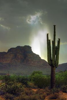 ✮ Storm over Red Mountain - AZ