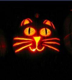 Cute cat pumpkin carving