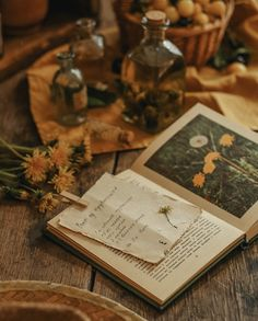Witch Aesthetic, Brown Aesthetic, Aesthetic Vintage, Aesthetic Photo, Aesthetic Pictures, Room Deco, Poster S, Hogwarts Houses, Mellow Yellow