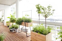 Space-Saving Balcony Decoration Ideas with Planter Box - Unique Balcony & Garden Decoration and Easy DIY Ideas Balcony Planters, Outdoor Balcony, Square Planters, Balcony Garden, Ikea Outdoor, Patio Decorating Ideas On A Budget, Modern Plant Stand, Love Garden, Garden Ideas