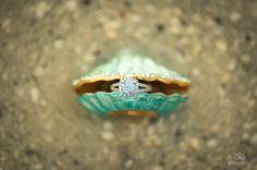Perfect wedding ring shot for a beach wedding! Credit: Katogenic Photography
