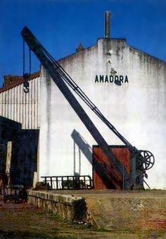 Retratos de Portugal: Amadora