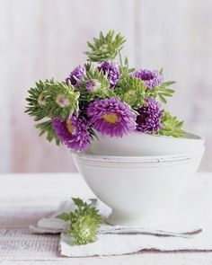 flowers in cups