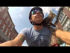 *MJ the Cat Enjoys Bike Rides Through the Streets of Philadelphia - httpS://www.youtube.com/watch?v=WTLsAnxUwzQ=player_embedded