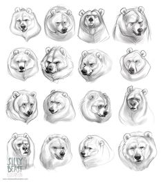 Super series of illustrations entitled Bear Concepts by Therese Larsson aka SIlly Beast Illustration from Stockholm, Sweden. Animal Sketches, Animal Drawings, Drawing Sketches, Art Drawings, Sketching, Bear Drawing, Poses References, Animation, Bear Art