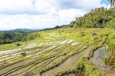 Heaven at the End of the World: Bali | FATHOM Travel Blog and Travel Guides