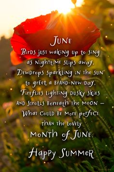 June Birds just waking up to sing as nighttime slips away, Dewdrops sparkling in the sun to greet a brand-new day, Fireflies lighting dusky skies and strolls beneath the moon-- What could be more perf Seasons Of The Year, Months In A Year, Happy Summer, Summer Time, Happy June, June Quotes, Welcome June, Monthly Quotes, Hello June