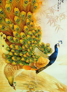 Peacock Dream ~ Vintage Japanese Peacock Painting