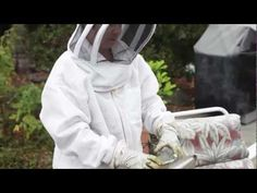 """In this episode of the Local News: The CVTV team visit with beekeeper Judy Casale who takes us on an educational tour of her backyard hives. With 20 years beekeeping experience, Casale sells honey and other """"hive derived"""" products at the Castro Valley Farmers Market and through her website."""