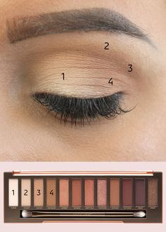 A colour by numbers guide to Urban Decay's best-selling eyeshadow palette – Makeup & Nail Ideas Eye Makeup Steps, Natural Eye Makeup, Makeup Tips, Makeup Ideas, Natural Beauty, Makeup Hacks, Loreal Eyeliner, How To Apply Eyeliner, Eyeliner Liquid
