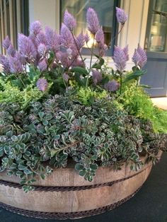 28 Container Gardens for Spring: Day 27 You can learn how to make one of these amazing container gardens for your very own! Get the DIY!