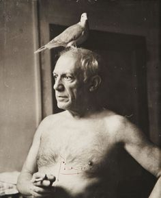 Put a bird on it, Picasso! (Pablo Picasso by James Lord) Pablo Picasso, Art Picasso, Picasso Dove, Picasso Prints, Georges Braque, Famous Artists, Great Artists, Cubist Movement, Foto Portrait