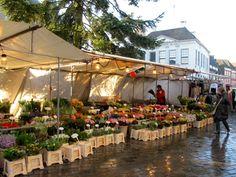 Elke vrijdagochtend en zaterdag de gehele dag markt in de binnenstad van Zwolle.