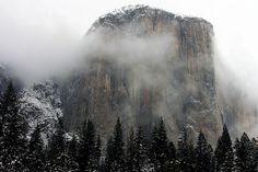 El Capitan's Snowy Fog by mcmillend