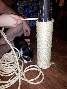 How to Build a Cat Tree Around a Basement Support Pole - screwed on straight