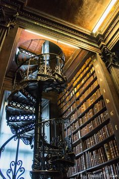 The appeal of a library's spiral staircase...