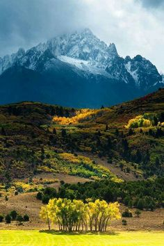 Mount Sneffels – Colorado - great picture, great contrast between foreground and the mountain in the background.**********I love Colorado Beautiful World, Beautiful Places, Beautiful Pictures, Wonderful Places, Beautiful Forest, Amazing Places, Wyoming, Places To Travel, Places To See
