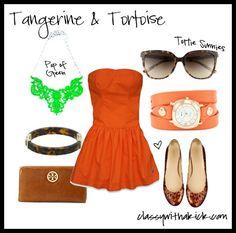 Tortoise & Tangerine