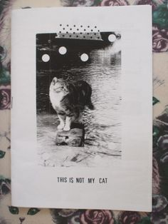 Cat zine  This is Not My Cat by sardonicsmile on Etsy, $2.50