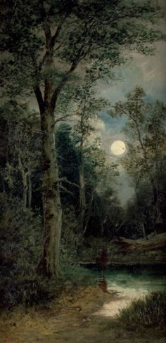 Mysterious  moonlit night in the forest.