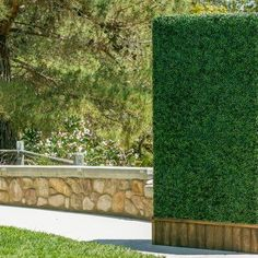Artificial Hedges, Artificial Boxwood, Tropical Landscaping, Backyard Landscaping, Landscaping Ideas, Landscaping Edging, Patio Ideas, Fence Screening, Hair