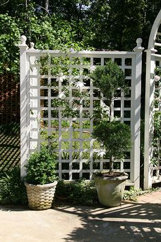 The wooden pergola is a good solution to add beauty to your garden. If you are not ready to spend thousands of dollars for building a cozy pergola then you may devise new strategies of trying out something different so that you can re Pergola Garden, Garden Fencing, Pergola Shade, Backyard Landscaping, Pergola Kits, Cheap Pergola, Pergola Roof, Pergola Ideas, Trellis Fence