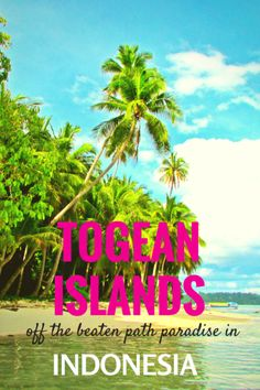 Togean Islands - #Sulawesi - One of the best kept #secret spots of #Indonesia   anianywhere.com