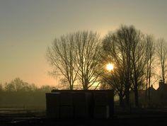 Sunny morning in Odijk by zwedendejong