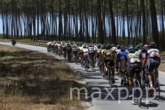 ©JOSE COELHO/EPA/MAXPPP - epa04872118 The pack in action during the 6th stage of 77th Tour de Portugal 2015 cycling race between Ovar and Oliveira de Azemeis, 4 August 2015.  #photo #photos #pic #pics #picture #pictures #snapshot #art #beautiful #instagood #picoftheday #photooftheday #color #all_shots #exposure #composition #focus #capture #moment #photojournalisme #photojournalism #reportage #sport
