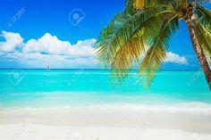 Playa Fotos, Retratos, Imágenes Y Fotografía De Archivo Libres De Derecho. Image 13173052.