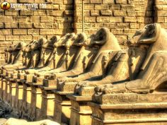 EGYPT Travel Ads (@EgyptTravelAds)   Twitter Egypt Tourism, Egypt Travel, Travel Ads, Tour Guide, Luxor Temple, Tours, World, Civilization, Tv
