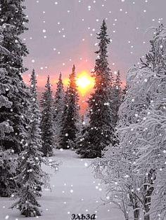 A White Christmas! Christmas Scenery, Winter Wonderland Christmas, Winter Christmas Scenes, Christmas Morning, Holiday, Winter Pictures, Christmas Pictures, Beautiful Winter Scenes, Winter Schnee