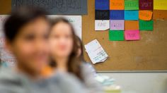 Bildung lässt sich nicht quantifizieren, persönliche Entwicklung nicht vermessen. Warum eine Forderung nach stärkerer Sichtung von Studien in die Irre führt. Eine Replik