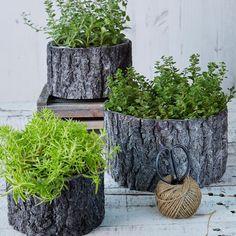 Nyt parveke uuteen uskoon! Lue vinkit kuinka saat tuotua metsän ihanuutta parvekkeellesi - pihaniksi.blogspot.fi