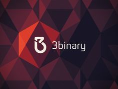3binary // 3b // logo by Ana Kova  ~ via dribbble.com