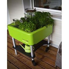 A horta / jardim deixa seu jardim ao seu gosto - Gemüse Garten - Elevated Garden Beds, Raised Garden Beds, Indoor Garden, Herb Garden Design, Garden Tools, Garden Ideas, Growing Herbs, Growing Vegetables, Fenced Vegetable Garden