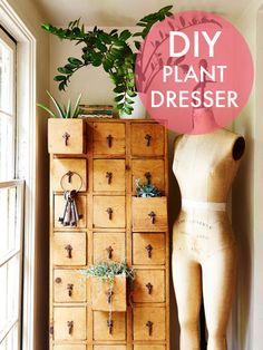 DIY PLANT DRESSER