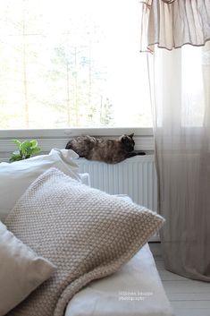 Mäkisen kauppa: Kissanpäivää