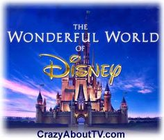 Wonderful World of Disney, we always called it the Wonderful World of Color...even thought we didn't have color tv!  Every Sunday night!
