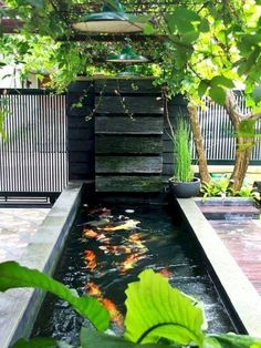 55 Most Popular Pond and Water Garden Ideas For Beautiful Backyard Small Water Gardens, Fish Pond Gardens, Garden Pond, Fish Pool, Koi Fish Pond, Koi Ponds, Koi Pond Design, Garden Design, Small Backyard Ponds