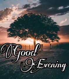 Good Evening Images Pictures Pics Wallpaper In HD Good Evening Greetings, Good Evening Wishes, Good Evening Friends Images, Good Morning Images, Wallpaper Pictures, Pictures Images, Hd Wallpaper, Good Evening Love, Birthday Wishes With Name