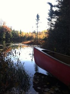 Afternoon paddling at the secret lake. #canoe #madriver #wi #wisconsin #oconto