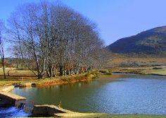 Dullstroom Why I Love You, Fly Fishing, South Africa, Places, Water, Outdoor, Image, Style, Gripe Water