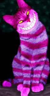 Cheshire Cat ˝cosplay˝ :D (photoshopplay)....You Have to Just Smile.....back..