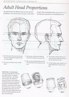 Uplifting Learn To Draw Faces Ideas. Incredible Learn To Draw Faces Ideas. Drawing Lessons, Drawing Techniques, Life Drawing, Drawing Tips, Figure Drawing, Drawing Heads, Painting & Drawing, Anatomy Reference, Art Reference